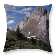 Shark Tooth Mountain Throw Pillow