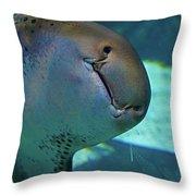 Shark View Throw Pillow