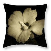 Sharon's Rose Throw Pillow