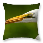 Sharp Curve Throw Pillow