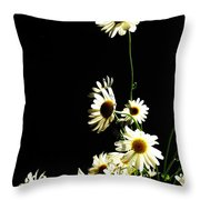 Shasta Daisies For Dad Throw Pillow