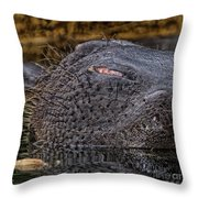 Shave Needed Throw Pillow