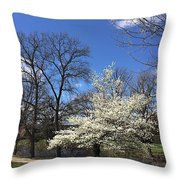 Shaw View Throw Pillow