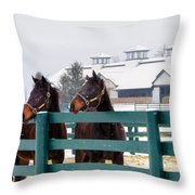 Shawanee Winter Throw Pillow