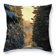Shawnigan Winter Road Throw Pillow