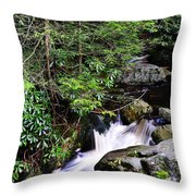 Shays Run Blackwater Falls State Park Throw Pillow
