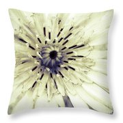 She Wants To Be Beautiful Throw Pillow