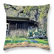 Shed 016 Throw Pillow