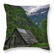 Shed In The Pass Throw Pillow