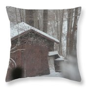 Shed Thru Glass And Snow Throw Pillow