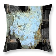 Shedding The Years Throw Pillow