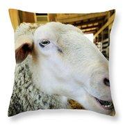 Sheep 2 Throw Pillow