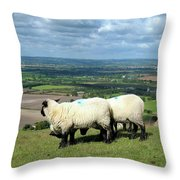 Sheep At Westbury Tor Throw Pillow