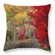 Sheep Canyon In Autumn Throw Pillow