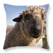 Sheep Face 2 Throw Pillow