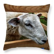 Sheep Four Throw Pillow