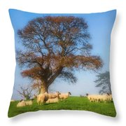 Sheep In Somerset - Impressions Throw Pillow