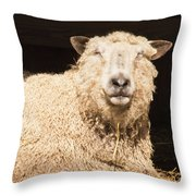 Sheep In Stable 2 Throw Pillow