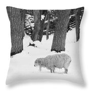 Sheep In Winter Throw Pillow