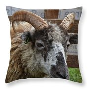 Sheep One Throw Pillow