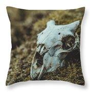 Sheep Skull Throw Pillow