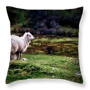 Sheep View Throw Pillow