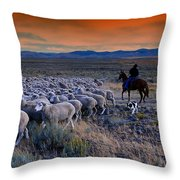 Sheepherder Life Throw Pillow