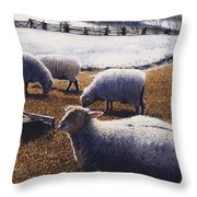 Sheepish Throw Pillow