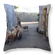 Sheeps Of Crete Throw Pillow