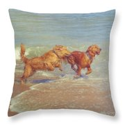 Sheer Joy Throw Pillow