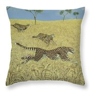 Sheer Speed Throw Pillow