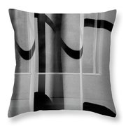 Sheer Starkness Throw Pillow