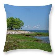 Sheffield Island Coast Throw Pillow