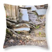 Sheldon Church Of South Carolina Throw Pillow