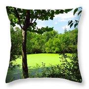 Sheldon Marsh Algae Pond Throw Pillow