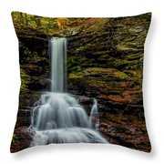 Sheldon Reynolds Falls Throw Pillow