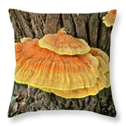 Shelf Fungus - Basidiomycota Throw Pillow