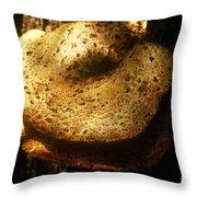 Shelf Mold Throw Pillow