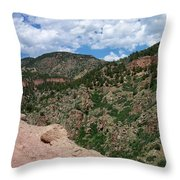 Shelf Road Drop Off Throw Pillow
