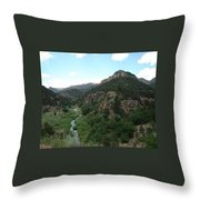 Shelf Road Vista Throw Pillow