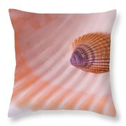 Shell And Baby Shell Throw Pillow