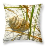 Shell And Beach Throw Pillow