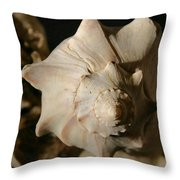 Shell And Driftwood Throw Pillow