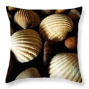 Shell Art - D Throw Pillow