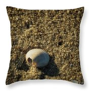 Shell At Dawn Throw Pillow