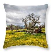 Shell Creek Awash In Yellow Throw Pillow