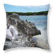 Shell On Dominican Shore Throw Pillow