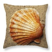 Shell On The Sand Throw Pillow