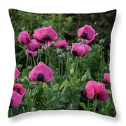 Shell Shaped Poppies Throw Pillow