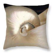 Shell Swirl Throw Pillow